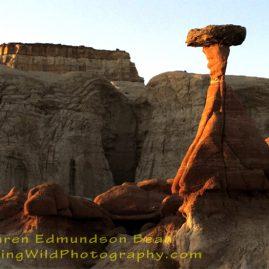 Mushroom Rock  digital photo