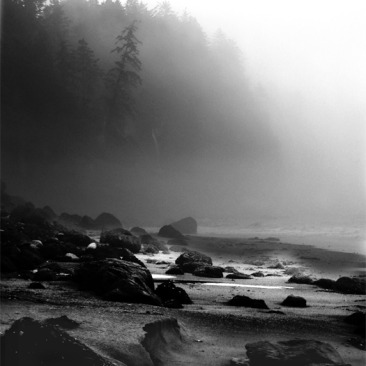 Misty Shore digital photo