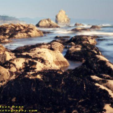 Rocky Shore pinhole